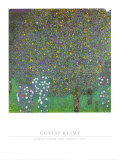Rose Bushes Under the Trees Art by Gustav Klimt