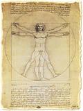 Vitruvian Man Proportions of the Human Figure Plakat autor Leonardo da Vinci