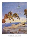 Droom veroorzaakt door de vlucht van een bij rond een granaatappel, ca. 1944 Schilderij van Salvador Dalí
