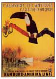 Peter Fussey - Amazonie, Antily, Hamburg-Amerika Linie (reklamní plakát ve francouzštině) Plakát