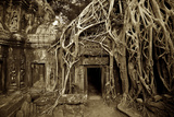 Strangler Fig Tree Roots Devour Temple Ruins at Ta Prohm Temple Fotografiskt tryck av Jim Richardson