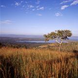 Overlooking Lake Ihema, Akagera National Park, Rwanda Fotografisk tryk af David Pluth