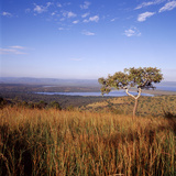 Overlooking Lake Ihema, Akagera National Park, Rwanda Photographic Print by David Pluth