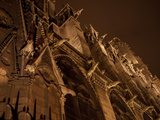 Gargoyles Leer Down From the Walls of Notre Dame De Paris Photographic Print by Stephen Alvarez