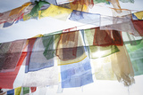 Buddhist Prayer Flags Hang From the Bodhnath Stupa Photographic Print by Cory Richards