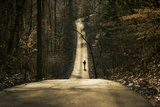 A Person Walking Down a Wooded Road Photographic Print by Richard Olsenius