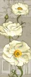 Pinwheel Whites I on Gray Art by Diane Hoeptner