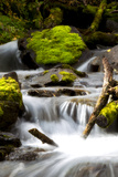 Water Rushing Past Mossy Rocks in a Woodland Stream Photographic Print by Robbie George