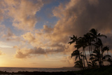 Silhouetted Palm Trees and Pinkish Clouds at Sunset on Poipu Beach Photographic Print by Marc Moritsch