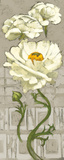 Pinwheel Whites II on Gray Posters by Diane Hoeptner