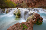 Havasu Creek Plunges in Waterfalls Over Moss Covered Rocks Photographic Print by Derek Von Briesen