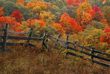 A Dilapidated Fence Among the Autumn Foliage in Ashe County Photographic Print by Rex A. Stucky