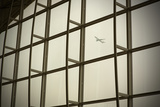 Airplane Flying Out of Hong Kong International Airport Fotografisk tryk af John Burcham