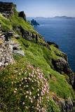 The Slopes of Skellig Michael Off the Kerry Coast, Ireland Fotografisk tryk af Chris Hill