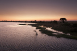 The Chobe River and Its Silhouetted Shoreline at Sunset Photographic Print by Sergio Pitamitz