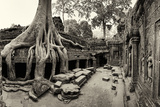 Strangler Fig Tree Roots Engulf Temple Ruins at Ta Prohm Temple Fotografiskt tryck av Jim Richardson