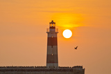 Birds Alight at the Base of the Extremo Molo De Abrigo Lighthouse at Sunset Fotografisk tryk af Mike Theiss