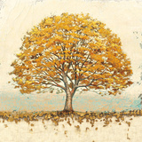 Golden Oak Prints by James Wiens