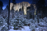 Sunlight on El Capitan and Snow Covered Evergreen Trees Fotografisk tryk af Raul Touzon