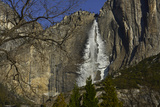 Yosemite Falls in Winter Photographic Print by Raul Touzon