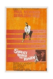 Sweet Bird of Youth, 1962, Directed by Richard Brooks Giclee Print