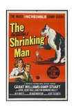 The Incredible Shrinking Man, 1957, Directed by Jack Arnold Giclée-Druck