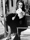 Claudia Cardinale, 1965 Photographic Print