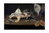 Bodegón: Pescados Y Un Gato Tras La Mesa, First Half 17th Century, Flemish School Giclee Print by Alexander Adriaenssen