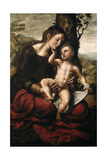 Virgin And Child, 1543, Flemish School Giclee Print by Jan Sanders Van hemessen