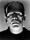 "Boris Karloff ""Frankenstein Lives Again!"" 1935 ""Bride of Frankenstein"" Directed by James Whale Photographic Print"
