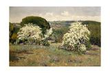 Hawthorn In Blossom, 1911, Spanish School Giclee Print by Aureliano De beruete