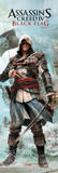 Assassins Creed 4 - Pistol Affiches