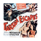 "The Capture of Tarzan, 1936, ""Tarzan Escapes!"" Directed by Richard Thorpe Giclee Print"