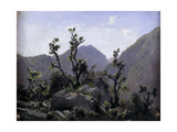 "Mountains ""Asturias"" Ca. 1874, Spanish School Giclee Print by Carlos De haes"