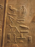 Relief of Hieroglyphs of Ptahhotep Titles at Necropolis Photographic Print