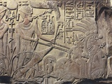 Egypt, Ancient Thebes, Valley of the Kings, Relief of Amenhotep III on Horse Chariot Photographic Print