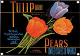 Tulip Porcelain Sign Wall Sign