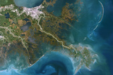 Satellite Image of Mississippi River Delta, Louisiana, USA Photographic Print