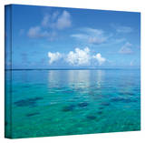 George Zucconi 'Lagoon & Reef' Wrapped Canvas Stretched Canvas Print by George Zucconi
