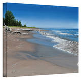Ken Kirsch 'Driftwood Beach' Wrapped Canvas Gallery Wrapped Canvas by Ken Kirsch