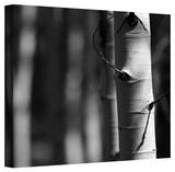 Mark Ross 'A Way Out' Wrapped Canvas Art Stretched Canvas Print by Mark Ross