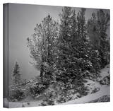 Mark Ross '10,000 Feet of Silence' Wrapped Canvas Art Stretched Canvas Print by Mark Ross