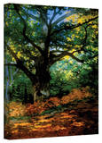 Claude Monet 'Bodmer Oak at Fountainbleau Forest' Gallery Wrapped Canvas Stretched Canvas Print by Claude Monet