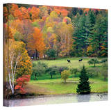 George Zucconi 'Killington, Vermont' Wrapped Canvas Stretched Canvas Print by George Zucconi
