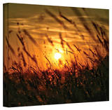 Mark Ross 'Evening with the Quiet Voice' Wrapped Canvas Art Stretched Canvas Print by Mark Ross