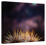 Mark Ross 'Obviousness Has its Advantages' Wrapped Canvas Art Stretched Canvas Print by Mark Ross