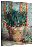 Vincent van Gogh 'Chives' Wrapped Canvas Art Stretched Canvas Print by Vincent van Gogh