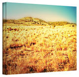 Mark Ross 'Take a Seat' Wrapped Canvas Art Stretched Canvas Print by Mark Ross