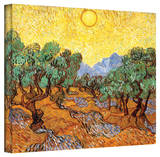 Vincent van Gogh 'Olive Trees' Wrapped Canvas Stretched Canvas Print by Vincent van Gogh