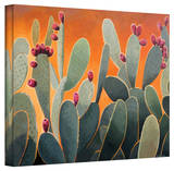 Rick Kersten 'Cactus Orange' Gallery Wrapped Canvas Stretched Canvas Print by Rick Kersten